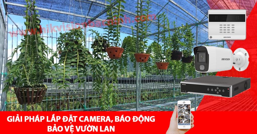 Giải pháp lắp đặt camera, báo động bảo vệ vườn lan tại Bắc Ninh 1